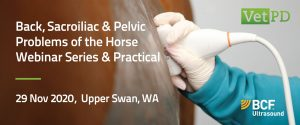 VetPD: Back, Sacroiliac & Pelvic Problems of the Horse