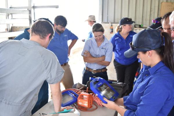 BI BCF cattle scanning course