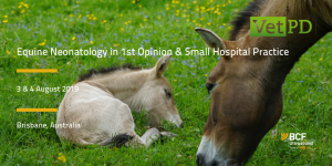 VetPD_ Equine Neonatology_Jul 19